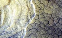 Utopia Planitia Scalloped Terrain